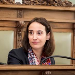 """Pilar Vicente (Cs): """"Los anteriores planes de Vivienda han fracasado y el actual no pone solución"""""""