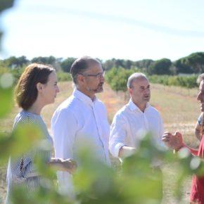 """Luis Fuentes: """"Exigiremos en Presupuestos medidas modernizadoras del sector primario de la Comunidad"""""""