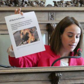 Cs consigue el compromiso del Gobierno Municipal de elaborar una normativa para la perrera municipal y mejorar el programa `Adopta´