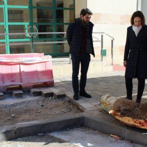 """Pilar Vicente (Cs): """"Puente es un incapaz que solo ha pisado Parquesol para talar árboles"""""""