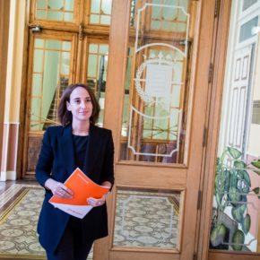 Pilar Vicente denuncia la incapacidad del Gobierno de Puente para mantener la ciudad limpia y sin pintadas