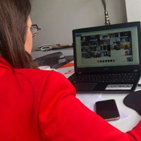 Las Diputadas de Ciudadanos participan en el primer Pleno que la Institución Provincial realiza de manera telemática